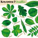 Kiquimank, un outil pédagogique pour reconnaître les feuilles
