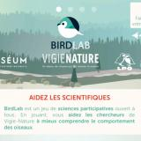 Découvrez la science participative et les oiseaux avec Birdlab !