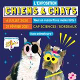 Exposition Chiens & Chats