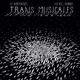Rencontres Trans Musicales de Rennes