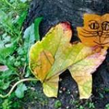 Atelier arts plastiques avec des feuilles d'automne