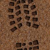 Détective en herbe : prise d'empreintes (2)