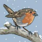 Traces des saisons : décembre
