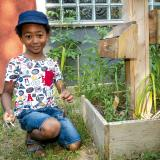 Activités au jardin : semer, planter, bouturer, marcotter (2)