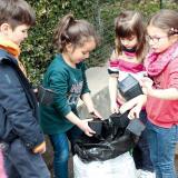Activités au jardin : semer, planter, bouturer, marcotter (1)